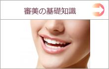 審美歯科の基礎知識