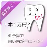 低予算 歯を白く