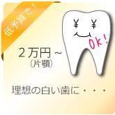 安く理想の歯に